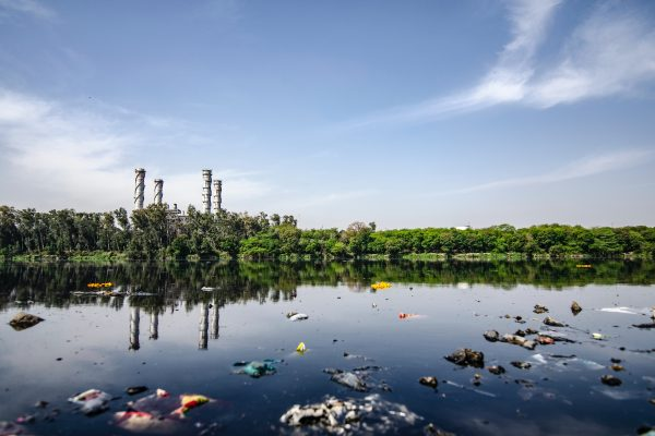 Garbage floating on a body water in front of trees and a factory.
