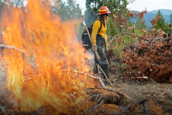 A firefighter carrying an axe stands behind a branch on fire.